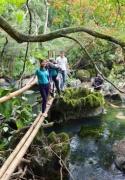 Mooc Spring Eco Trail